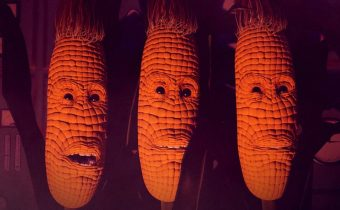 Maize: A Journey with Corn